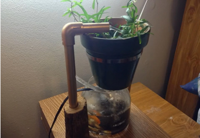 Build Your Own Small Aquaponics System In 16 Easy Steps
